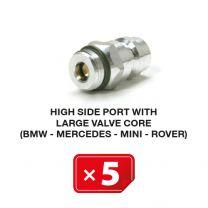 Boquilla lado Alta Presión con válvula larga (BMW-Mercedes-Mini-Rover) (5 uds.)